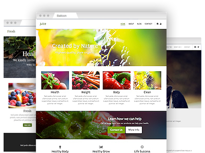 An assortment of easy–to–re–design themes